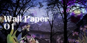 Wall Paper 01 オリジナル壁紙ダウンロード01